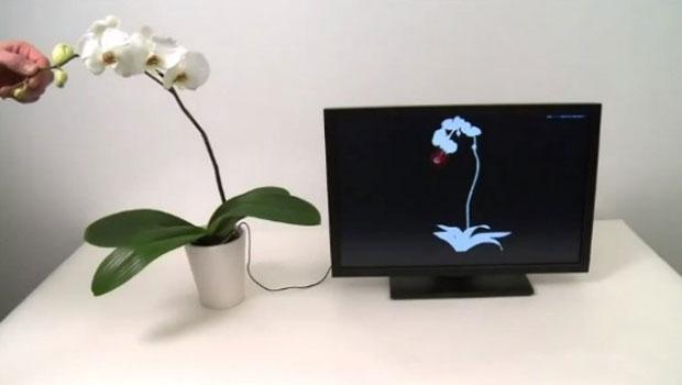 Tecnologia pode permitir que qualquer objeto seja convertido em um dispositivo touch (Foto: Reprodução)