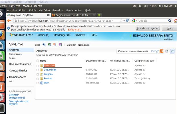 Criando uma nova pasta no SkyDrive no navegador (Foto: Reprodução/Edivaldo Brito)
