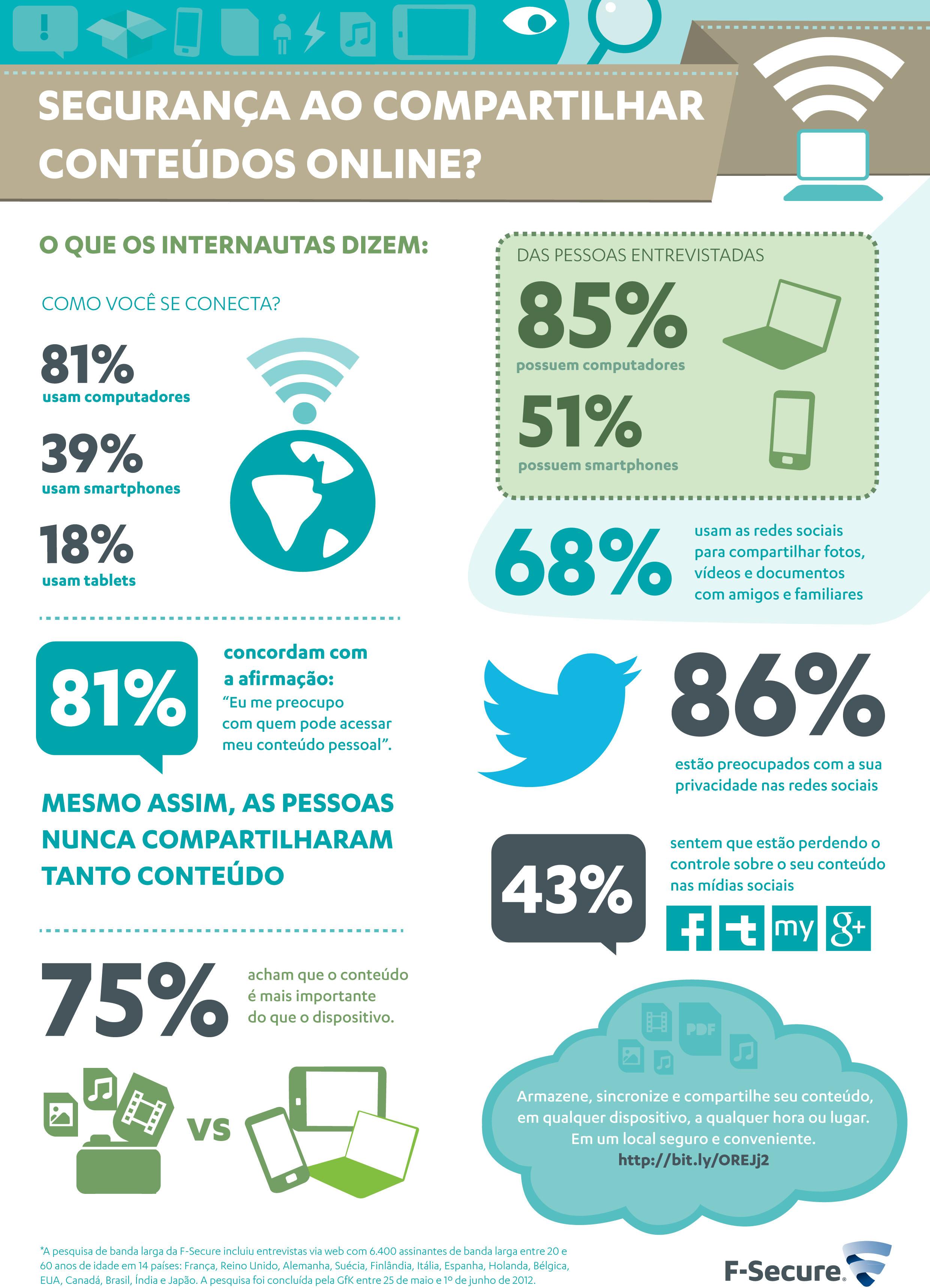 Infogrfico mostra a preocupao dos brasileiros com segurana na Internet (Foto: Reproduo)