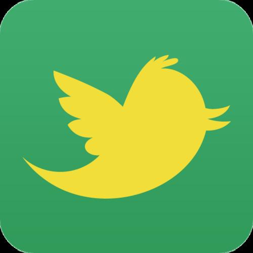 Twitter no Brasil está em queda (Foto: Reprodução)