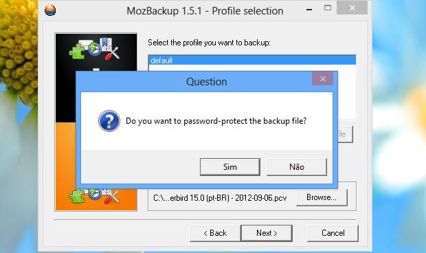 MozBackup oferece a possibilidade de proteger dados com senha (Foto: Reprodução/Helito Bijora)