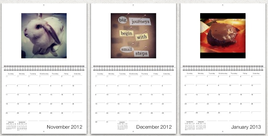 Com o .... é possível criar calendários descolados e personalizados (Foto: TechTudo)
