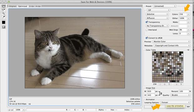 """Na opção """"Salvar para Web e Dispositivos"""", configure o arquivo GIF para looping eterno (Foto: Reprodução/Isadora Díaz)"""