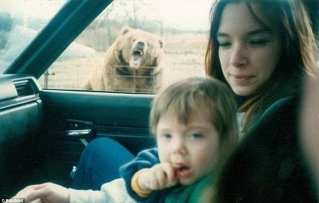 Urso urra enquanto mãe e filho estão no carro (Foto: Reprodução)