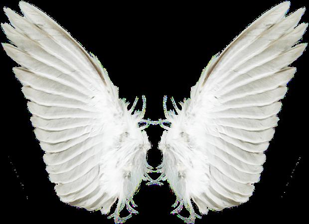 Imagem usada para fazer a montagem (Foto: Reprodução)
