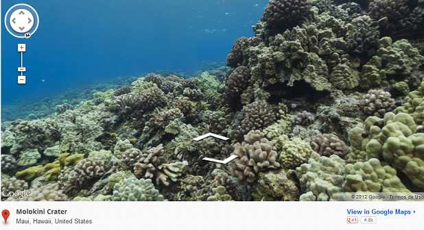 Agora Google Street View oferece até imagens subaquáticas (Foto: Reprodução)
