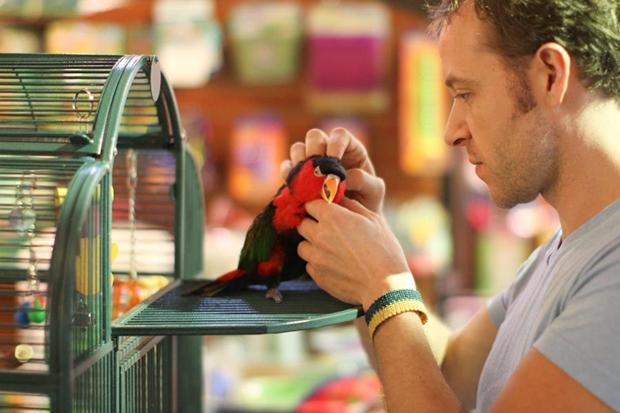 Dono de loja de aves exóticas com um pássaro (Foto: Brandon Stanton)