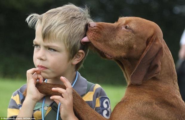 Beijinho do cão em menino venceu categoria de melhor amigo do homem (Foto: Reprodução)
