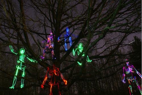 Esqueletos em árvores feitos com a técnica light painting (Foto: Janne Parviainen)