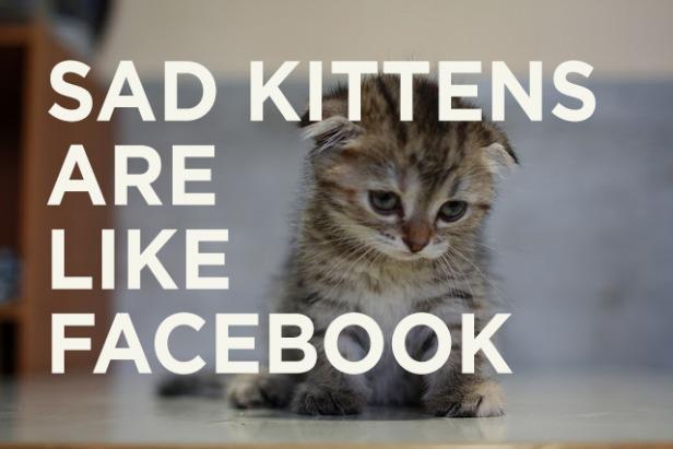 """""""Gatinhos tristes são como o Facebook"""" (Foto: Reprodução/Mashable)"""