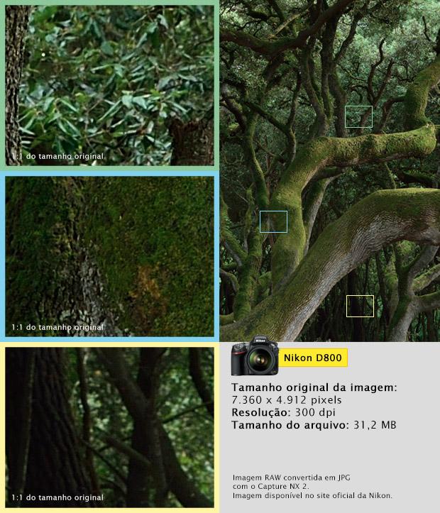 Imagem capturada com a Nikon D800 (Foto: Divulgação)