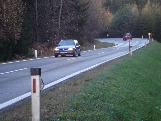 Postes percebem a presença de carros e emitem sinais que desviam os animais do perigo (Foto: Reprodução)