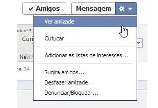 Ver amizade no Facebook (Foto: Reprodução)