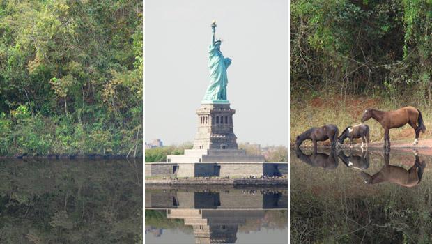 Exemplos de efeito de reflexo na água (Foto: Reprodução/Adriano Hamaguchi)