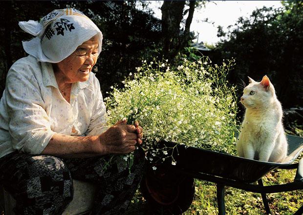 Livro mostra amizade de Misa e seu gato (Foto: Reprodução/ Idosa tem a companhia do gato em todos os momentos (Foto: Reprodução/  Misa e Fukumaru (Foto: Reprodução/  Miyoko Ihara)