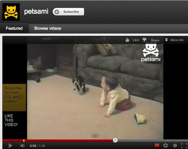 Vídeo compila situações engraçadas com crianças e seus animais de estimação (Foto: Reprodução)