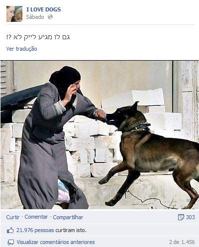 Foto de mulher sendo atacada por um cão tem mais de 20 mil curtidas no Facebook (Foto: Reprodução/Facebook)