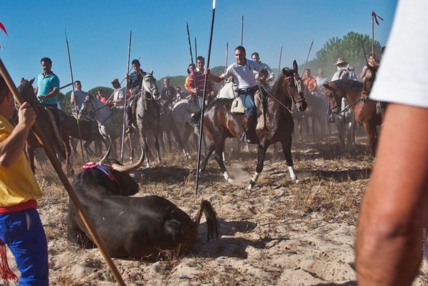 Pessoas praticando a Tourada, na Espanha (Foto: Reprodução/Jon Amad)