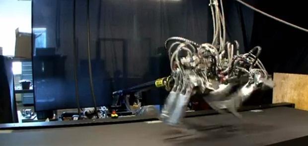 Cheetah é o robô mais rápido já construído (Foto: Reprodução)