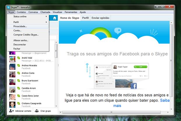 2 acessando a privacidade no skype