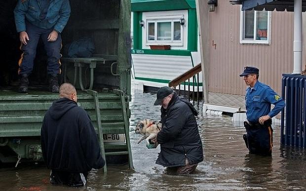 Resgate de um cão durante o furacão Sandy nos Estados Unidos (Foto: Reprodução/washingtontimes.com)