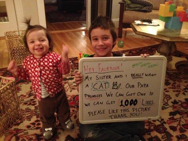 Foto compartilhada no Facebook para que Remi ganhasse o tão desejado gato (Foto: Reprodução/Faceboook) (Foto: Foto compartilhada no Facebook para que Remi ganhasse o tão desejado gato (Foto: Reprodução/Faceboook))