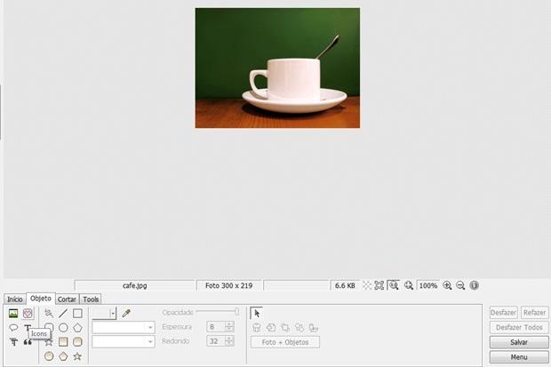 Localização da ferramenta Icons, por onde a brush será inserida (Foto: Reprodução/Raquel Freire)
