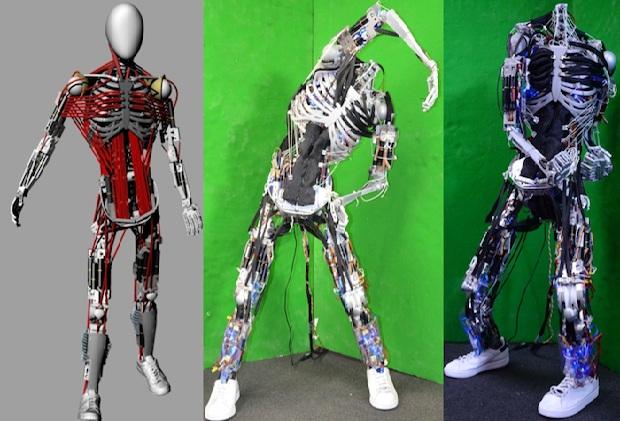 Kenshiro é o robô mais próximo de um ser humano atualmente (Foto: Reprodução/IEEE Spectrum)