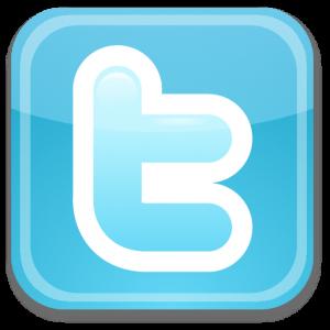 Twitter está muito valorizado no mercado financeiro (Foto: Reprodução/Topekaism)