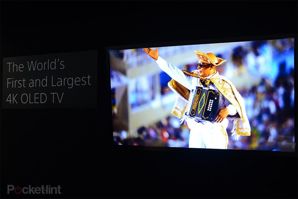 Sony mostra imagens do Carnaval para apresentar o primeiro protótipo da TV 4K OLED (Foto: Reprodução/Pocket-lint)