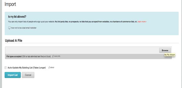 A forma mais eficaz é fazer upload no Mailchimp através de um arquivo (Foto: Reprodução)