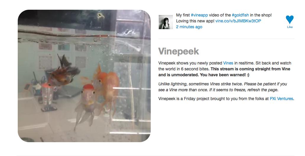 Minivídeos dos usuários entram em loop no novo site (Foto: Reprodução/Vinipeek)
