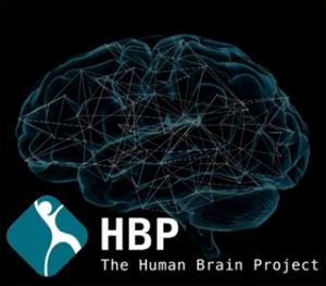 O Projeto Cérebro Humano