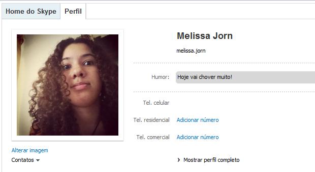 Mensagem de humor é exibida no perfil do Skype (Foto: Reprodução / Skype)