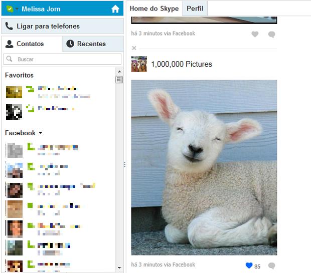 Conecte o seu Facebook ao Skype e comente e curta posts da rede social (Foto: Reprodução / Skype)