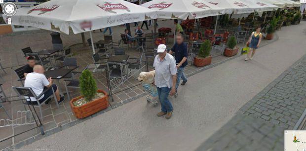 Cachorro é guiado em um carro de supermercado no Street View (Reprodução|BuzzFeed)