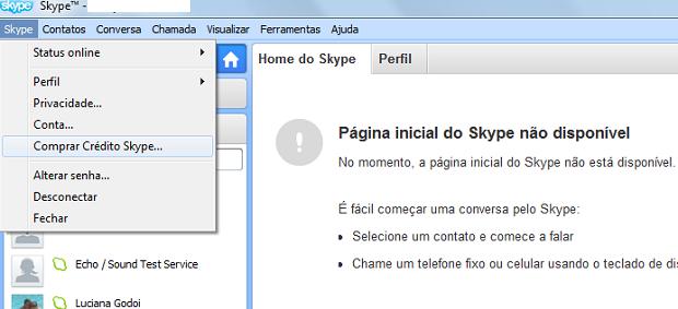 Processo de compras no Skype é simples (Foto: Thiago Barros/TechTudo)