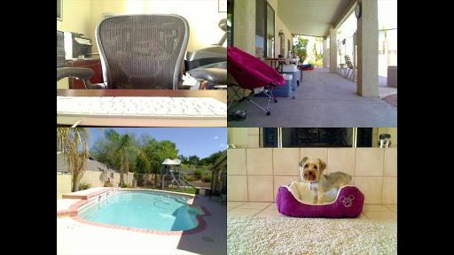 Monitore o seu cão pelo smartphone (Foto: Reprodução/ Google Play)