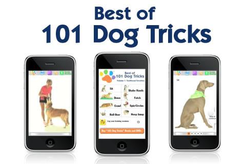 Interaja com seu cão ensinando truques com o Dog Tricks (Foto: Divulgação/ App Store)