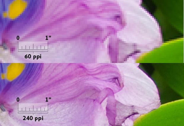 Imagem da Adobe ajuda a entender a relação de densidade de pixels com qualidade e definição da imagem. No primeiro corte, uma foto com apenas 60 pixels por polegada. Abaixo, outra com 240 pixels por polegada (Foto: Reprodução)