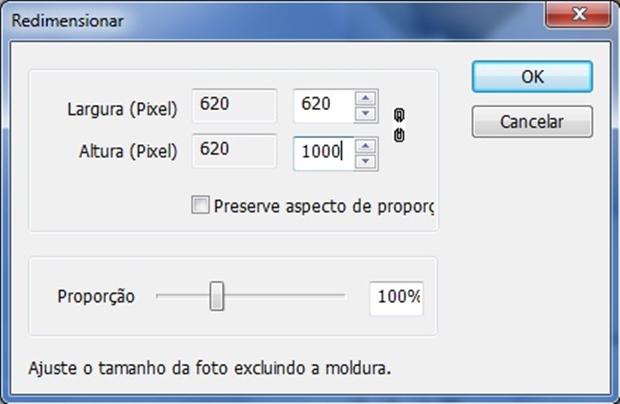 """Box """"Redimensionar"""" com proporção desbloqueada (Foto: Reprodução/ Raquel Freire)"""