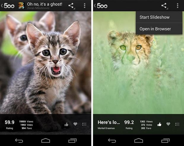 500px chegou ao Android com vários recursos (Foto: Divulgação)