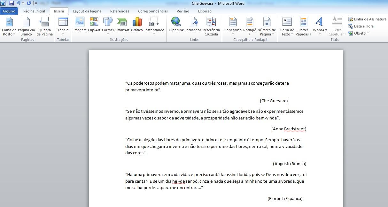 Textos unificados no Word (Foto: Reprodução/Marcela Vaz) (Foto: Textos unificados no Word (Foto: Reprodução/Marcela Vaz))