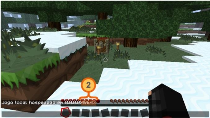 Mensagem contendo informações de IP e PORTA do Minecraft (Foto: Reprodução/Silas Tailer)