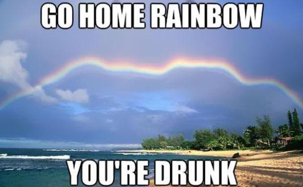 """Na imagem, """"Vá para casa, arco-íris. Você está bêbado"""" (Foto: Reprodução/Bored Panda)"""