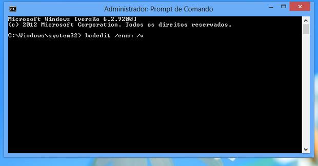 Executando comando do prompt do Windows 8 (Foto: Reprodução/Edivaldo Brito)