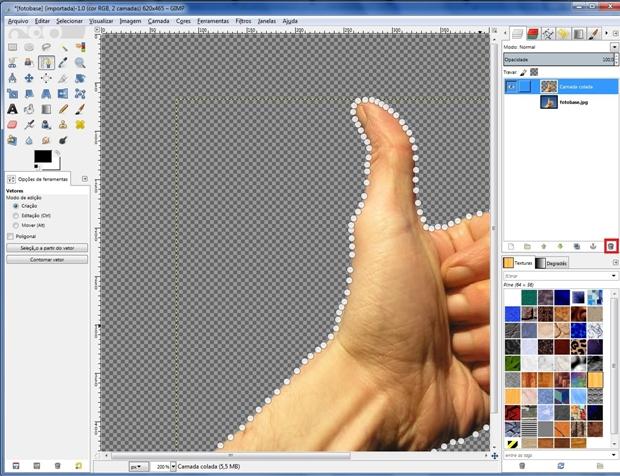 Destaque para ícone lixeira, usado para deletar a camada original (Foto: Reprodução/Raquel Freire)