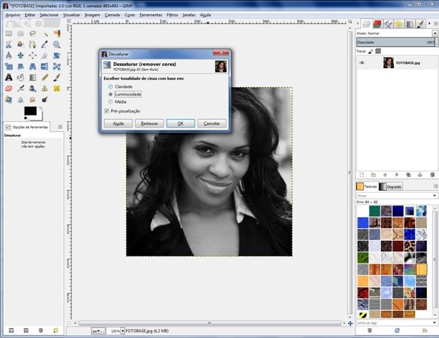 """Janela """"Dessaturar"""" com a opção """"Luminosidade"""" marcada (Foto: Reprodução/Raquel Freire)"""