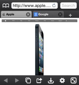Atomic Web é outra opção diferenciada para navegação pelo iOS (Foto: Divulgação)