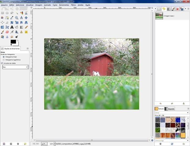 Tela inicial do Gimp com imagem carregada (Foto: Reprodução/Raquel Freire)